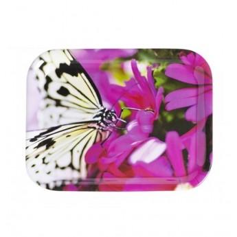 Taca motyl z melaminy