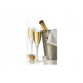 Zestaw kieliszków do szampana 2 szt - Gimex